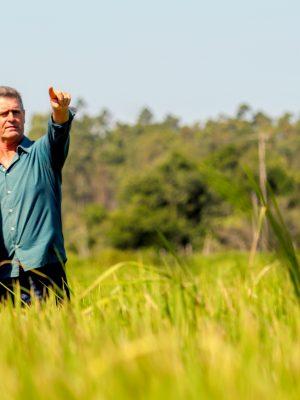 arranjo-produtivo-do-arroz-irrigado-tambem-integra-a-pauta-do-evento