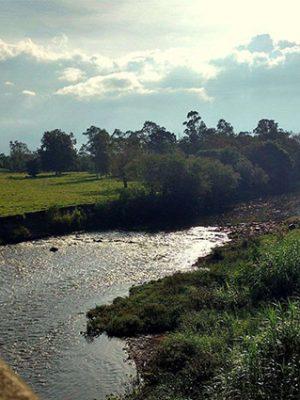 rio-mae-luzia-3-francine-ferreira